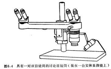 显微镜的镜筒-北京瑞科中仪科技有限公司